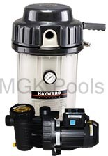 EC50 DE Filter w/Spec Variable Speed Pump