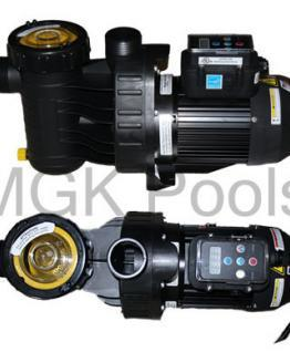 Speck A91 Pool Pump - Inground Variable Speed Swimming Pool Pump